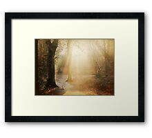 In the autumn of his life... Framed Print