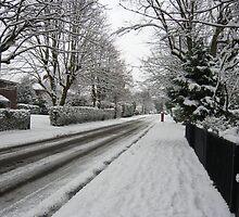 Snowy Road by damonsphotos