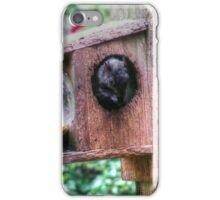 Squirrel Buffet iPhone Case/Skin