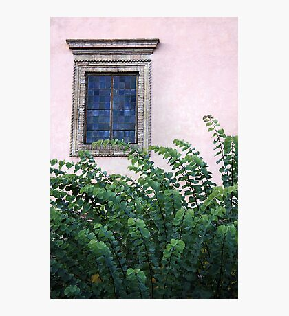 Leafy excursion Photographic Print