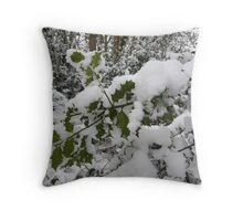Holly in Winter  Throw Pillow