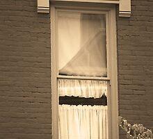 Jonesborough, Tennessee - One Window by Frank Romeo