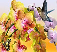Hummingbird And Orchids by Arizonagirl