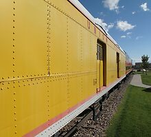 Railroad Train by Frank Romeo