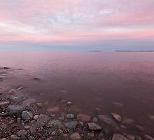 Pink by EvaMcDermott