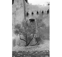 Santa Fe - Adobe Building and Tree Photographic Print