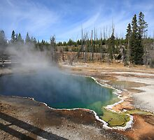 Yellowstone Park by Frank Romeo