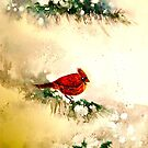 Winter..My Christmas Friend by © Janis Zroback