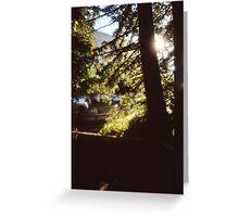 Bendy Tree  Greeting Card