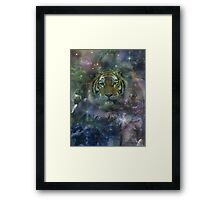 Beautiful Tiger   Framed Print