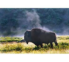 Buffalo Steam-Signed-#2170 Photographic Print