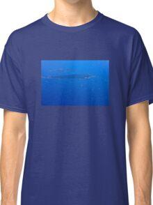 Îles de Lérins, Cannes - The French Riviera Classic T-Shirt