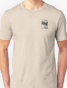 industrial urban wall: interprits rurality T-Shirt