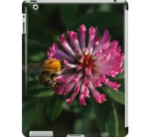 A Bumblebee on the Clover Flower iPad Case/Skin