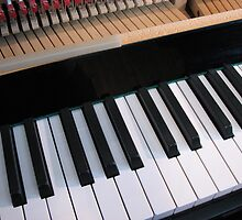 Section of Piano Keyboard by BlueMoonRose