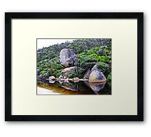 zen of nature Framed Print