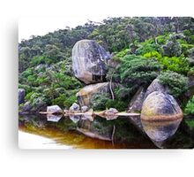 zen of nature Canvas Print
