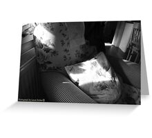 A Seat in the Sun - Cottage Interior, County Donegal. Greeting Card