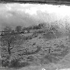 View through Veils - Cottage Window, County Antrim. by Laura Butler