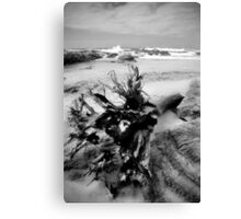 Adrift on Umzumbe beach, South Africa Canvas Print