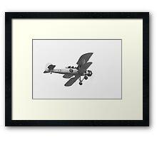 Swordfish Salute Framed Print