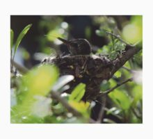Baby Hummingbird Sticking Out Its Tongue Kids Tee