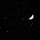 Erratic Stars by Kasia Nowak