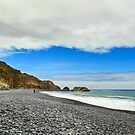 Walking On The Lost Coast by James Eddy