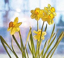 Birth Month Flower - March - Daffodil (Narcissus) by sitnica