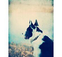 I Wait and I Wonder Photographic Print