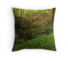 Green Ravine, Short Hills Provincial Park Throw Pillow