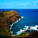 Kilauea Lighthouse, Kauai by Benjamin Padgett