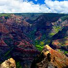 Waimea Canyon Panoramic by Benjamin Padgett