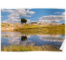 Dog Rocks Water Hole Poster