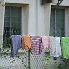 the fence will do - melaka, malaysia by BreeDanielle