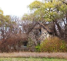 A Homestead by Connie Bunke