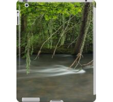 Fallen tree iPad Case/Skin