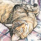 Chilling on th Sofa by Charlotte Yealey