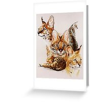 Adroit Greeting Card