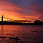 Cincinnati Sunset by Tony Wilder