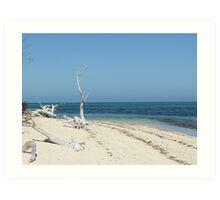 Deserted Beach - Green Island Art Print