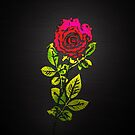 Embossed Rose by Ra12