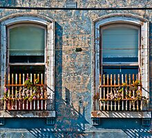 Flemington windows by John Walker