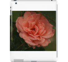 Peach of A Rose iPad Case/Skin