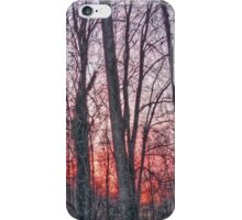 Sunset Forest iPhone Case/Skin