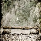 bench in forest by Victor Bezrukov