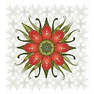 Christmas Flower by catherine bosman