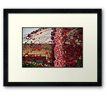Autumn colours # 5 - The secret  window  Framed Print