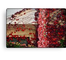 Autumn colours # 5 - The secret  window  Canvas Print