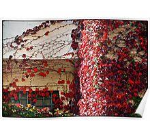 Autumn colours # 5 - The secret  window  Poster